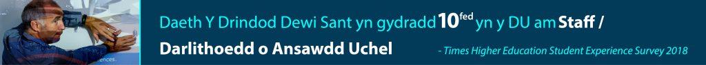 Daeth Y Drindod Dewi Sant yn gydradd 10fed yn y DU am Staff / Darlithoedd o Ansawdd Uchel