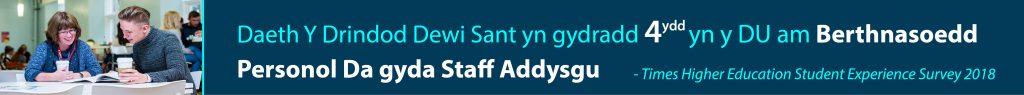 Daeth Y Drindod Dewi Sant yn gydradd 4ydd yn y DU am Berthnasoedd Personol Da gyda Staff Addysgu